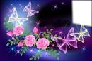 papillons et roses
