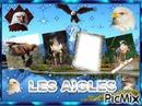 LES AIGLES (montage fait par GINO GIBILARO)