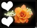 *Rose et brin de Muguet*