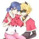 marinette dupain cheng chat noir adrien agreste