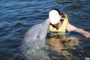 avec dauphin