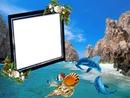 Cadre de la mer*