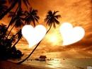 amour de la plage