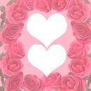 LOVE LOVE 2