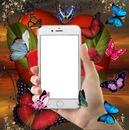 Cc Celular y mariposas