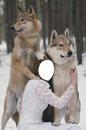 woman wolf
