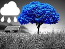 nube-lloviendo-arbol-azul