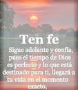renewilly ten fe
