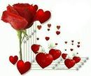 La fleur de l'amour