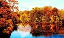 autumn , осень