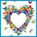 Cc Corazón de mariposas