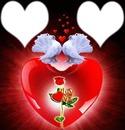"""deux colombes avec coeurs """" love """""""