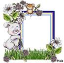 le lapin de mai