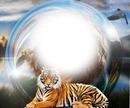 Sfera tigre