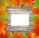 Autumne 1