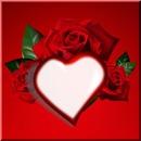 Dj CS Love Heart Rose