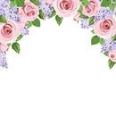 Bord rose