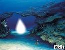 sous l'ocean