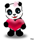 panda etoile 2 photo