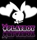playboy coeur