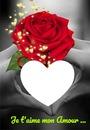 pour son amour