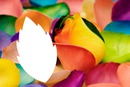 multicolore laly