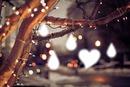 Invierno Amoroso