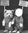 revendications des chiens