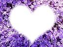 flores morados con corazon