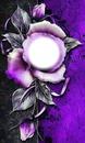 sliver rose