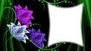 neon flor