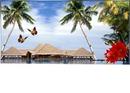 vacances  dans  les  Iles