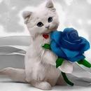 renewilly rosa y gato