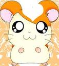 j'aime hamtaro <3 <3