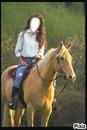 le cheval de l TERRE