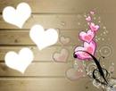 love 3 coeurs