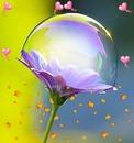 Ccentre una flor y burbuja