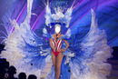 Miss USA 2014 National Costume
