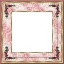 cadre fleur rose