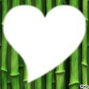 vert coeur