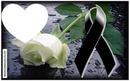 Rosa de luto