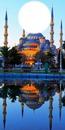 mosquée bleu