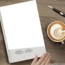 Tofaş - Fiat Book Cover