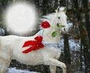 cheval de neige