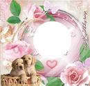 perritos dulces enamorados <3