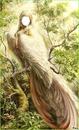fille oiseau