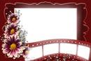 cadre ciné fleur
