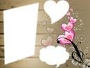 Amor forever