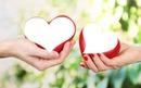 Love u crveno Srce