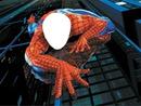 spiderman 1photo